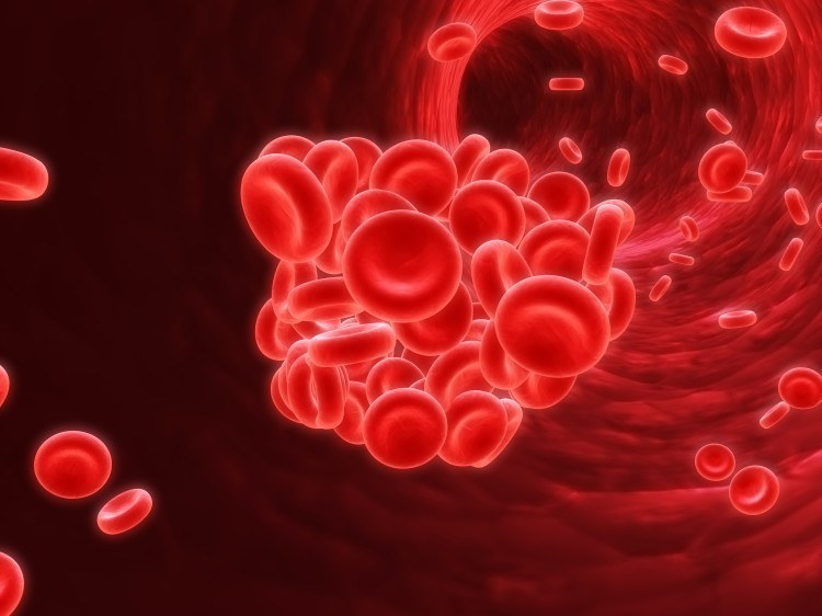 Atrial Fibrillation – Part 2 – Blood thinners