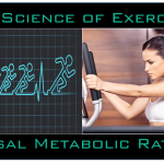 Science of Exercise:  Basal Metabolic Rate