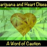 Marijuana And Heart Disease – A Word Of Caution