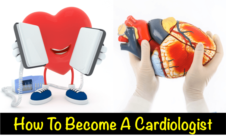 How to Become a Cardiologist Written by Cardiologists