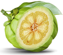 Garcinia cambogia and gastric sleeve