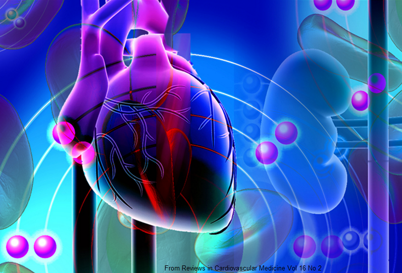 Treatment of High Blood Pressure: When Medicines Don't Work